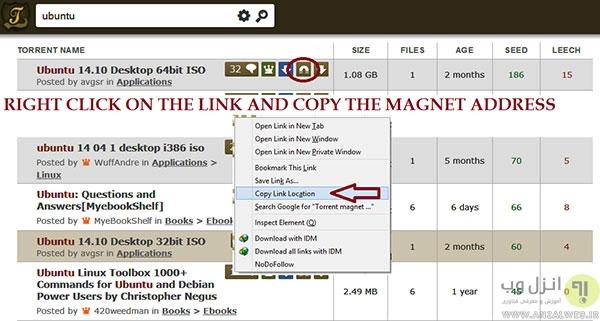 دانلود فایل های تورنت با سرعت بالاتر توسط دانلود منیجر