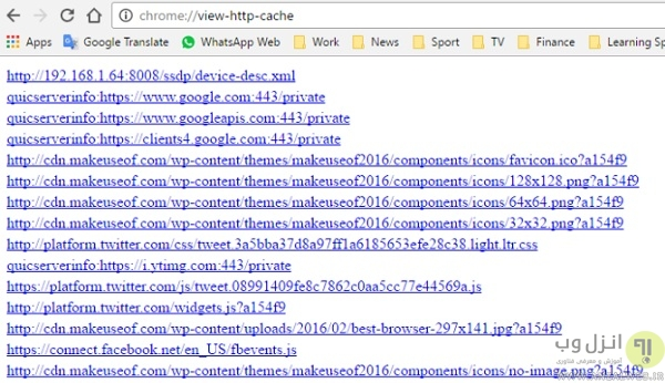 chrome://view-http-cache