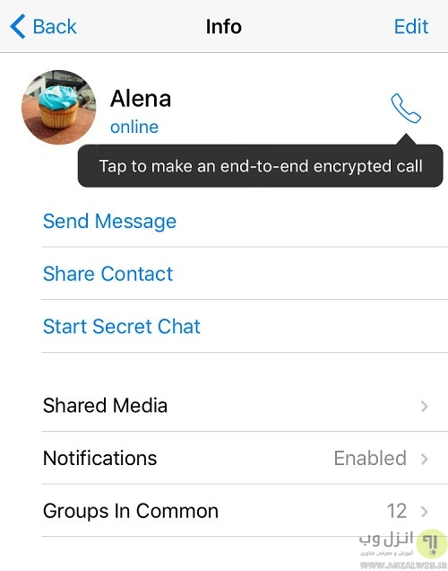 گزینه تماس با فرد مورد نظر تلگرام کجاست ؟
