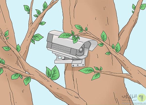 مخفی کردن دوربین مداربسته روی درخت یا بوته