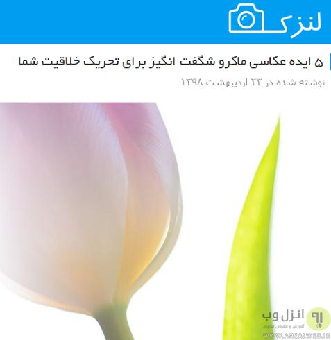 بهترین سایت های عکاسان و عکاسی جهان و ایران