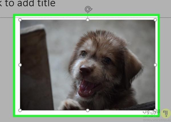 فشرده کردن عکس ها در PowerPoint ویندوز برای کاهش حجم فایل پاورپوینت