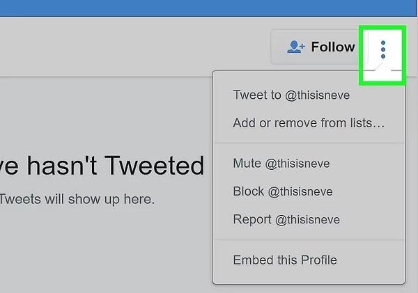 چگونه یک Tweet را در تویتر ریپورت کنیم؟