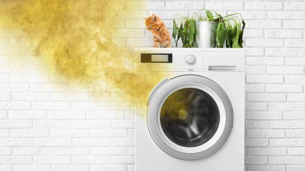 گرمای بیش از حد ماشین لباسشویی