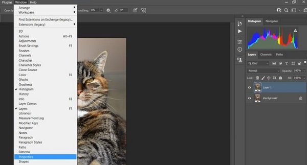 آموزش فتوشاپ عکس گربه ، سگ و...
