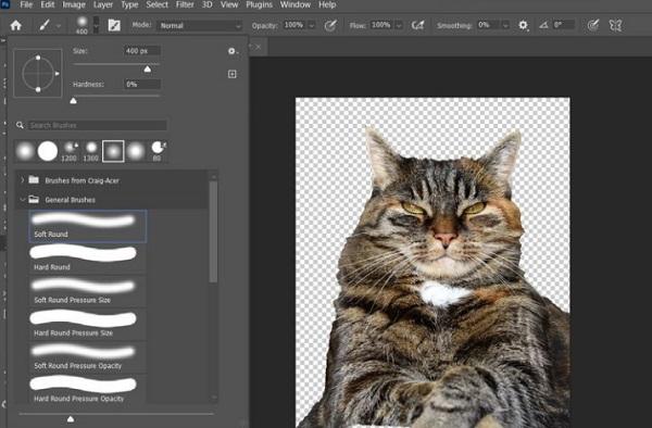 فتوشاپ حیوانات روی عکس